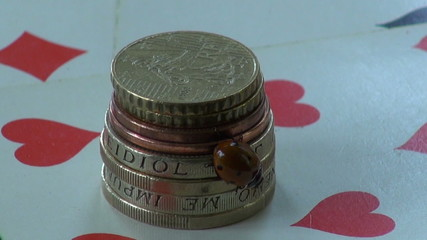 luck symbol ladybird ladybug on money metal coins