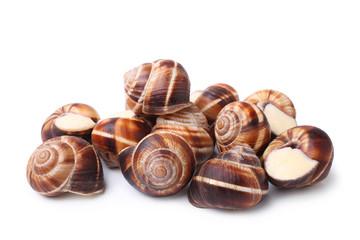 Edible snails (escargot)