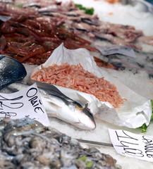 fresh fish on sale in fish market outdoor market