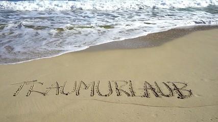 Wort Traumurlaub in Sand geschrieben wird von Wellen weggespült