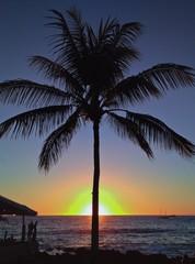 Beach Sunset with Palm Tree on Kailua Kona, Big Island of Hawaii