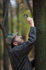 Man detective with a beard examines single dry leaf