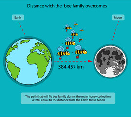 Way which is overcome by a family of bees
