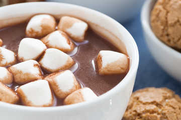 cup of cocoa with marshmallows, selective focus