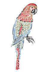 parrot bird with ornament pattern