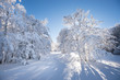 canvas print picture - Paysage hivernal