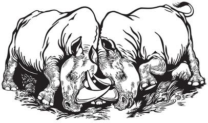 two rhinoceros