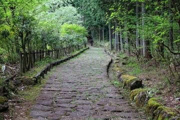 Japan trail - Nakasendo road