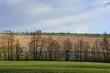 canvas print picture - Landschaft in Sachsen