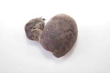 Vitelotte potatoe