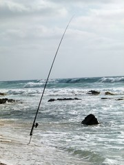 pesca solitaria