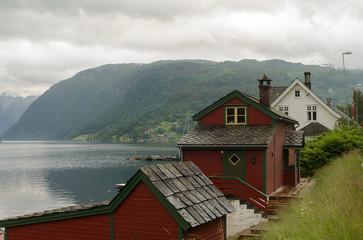Neuro fjord