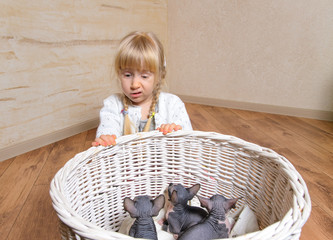 Sad Blond Girl Behind a Basket of Sphynx Kittens