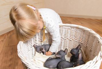 Blond Girl Holding Sphynx Kittens in a Basket