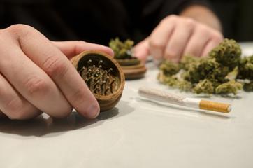 Anonymous man preparing marijuana drug cigar