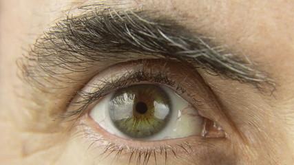 Friar eye macro ominous