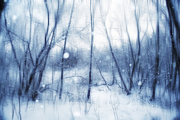 winter, snow on the branches of a tree, patterns