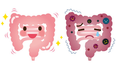 健康な大腸 病気の大腸