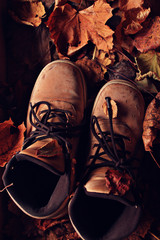 old broken leather shoes autumn leaves tour