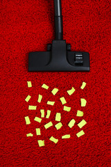 Vacuum cleaner to tidy up carpet