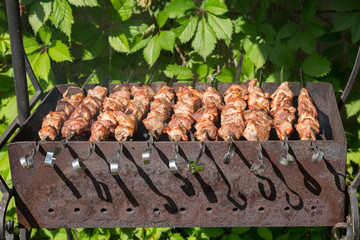 Shashlyk (kebab) grilling on the bbq