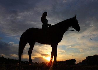 Equestrian rider silhouette at sunset