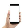 Hand holding smart phone - 78095985