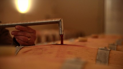 Decanting wine in a barrel's cellar