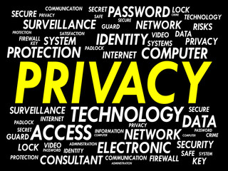 PRIVACY word cloud, business concept