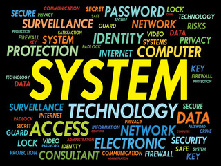 SYSTEM word cloud, business concept