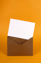 Brown envelope with blank message card