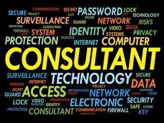 CONSULTANT word cloud, security concept