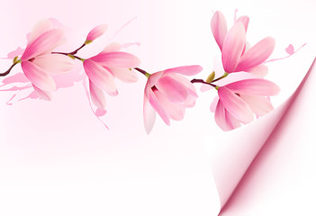 Spring background with blossom brunch of pink flowers. Vector