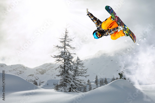 snowboarder in the fog Poster