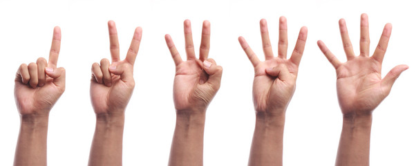 One to five fingers count hand gesture isolated
