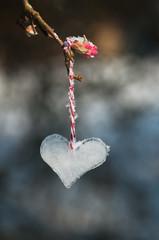 Ice heart. Valentine's Day concept.