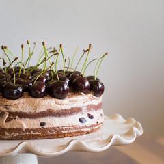 Chocolate Sponge Cake with Cream and Cherries on the Cake Stand