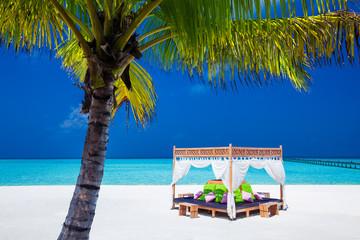 tropical wedding ceremony location. blue sky and palm tree