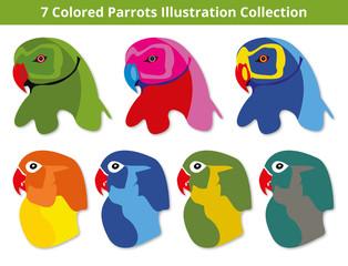7 Colored Parrots Illustration Collection