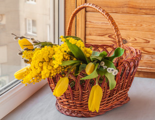 Mimosa, willow twigs and tulips in a basket