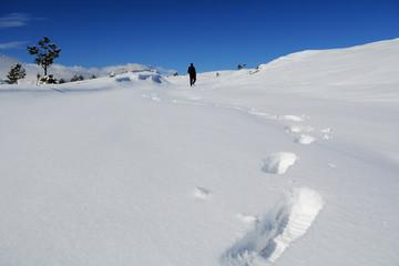 kış gezisi ve ilk adımlar
