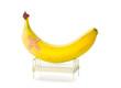 Banana lies in hospital bed