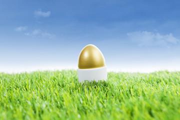 Golden easter egg on grass