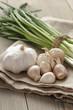bunch of fresh organic green onions and garlic