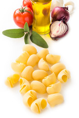 Raw Lumache, Italian Pasta