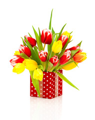 beautiful tulips in the red polka-dot gift box. happy mothers da