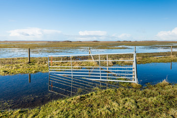 Crooked steel gate in a flooded nature reserve