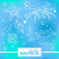Set of nautical doodles with turtlesand crab