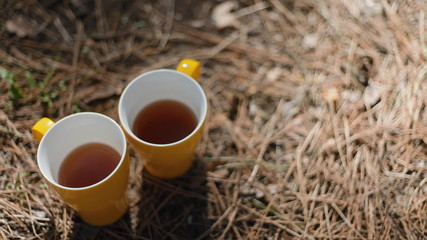 Two yellow cups of tea outdoor
