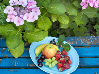 Aerial Shot of Fresh Fruits on Plate at the Garden.
